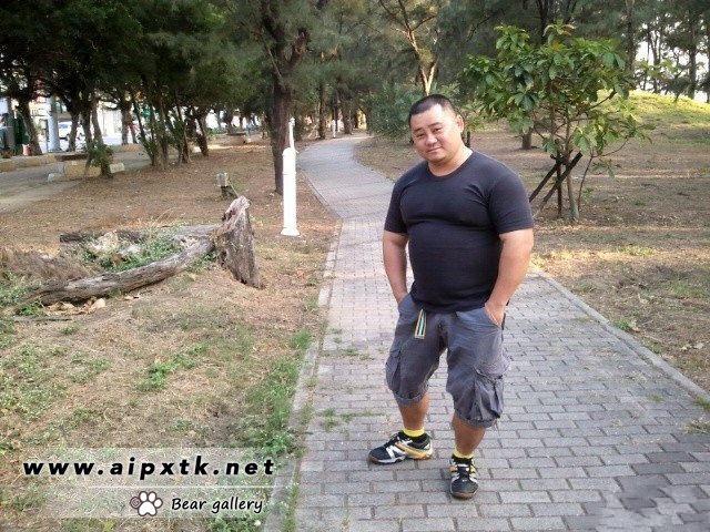 中年胖熊 #壮熊