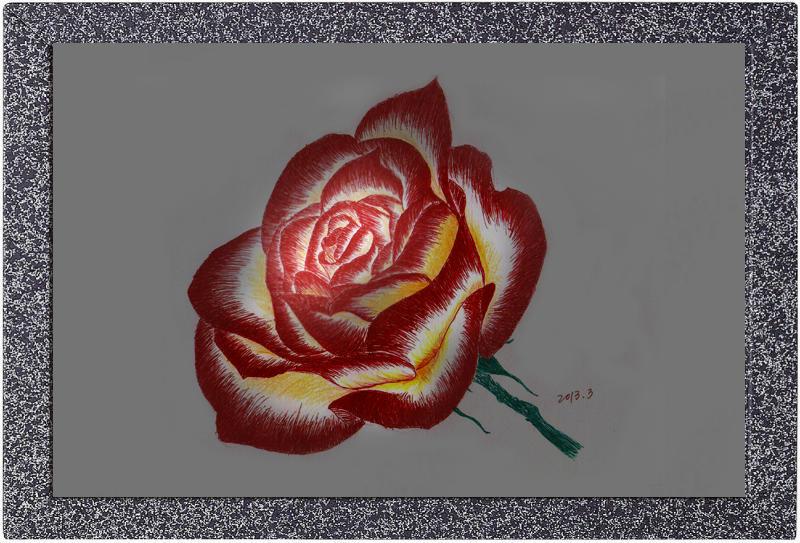 彩色铅笔画玫瑰花 3d铅笔画图片画法 铅笔画图片可爱简单图片