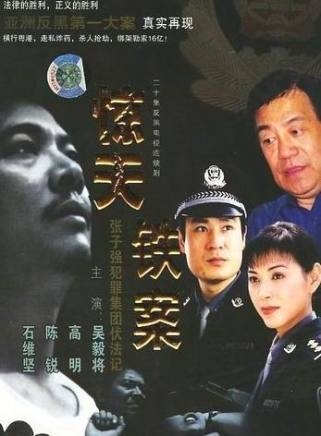 2009年,抗战出演热血电视剧《题材类型香》.和花儿长安花篮一样有哪些电视剧图片