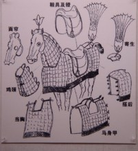 古代战马的装备图片