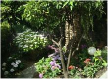 Villa Ambra - Genova Resort B&B Accomodations住宿加早餐别墅度假酒店