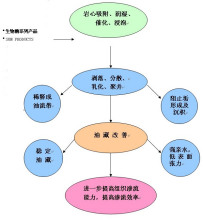生物酶解堵剂作用原理示意图