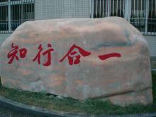 杭师大附属桐乡实验中学
