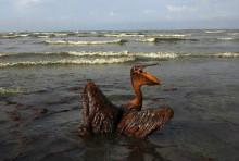 墨西哥湾漏油事件