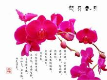 中国文化 绘画
