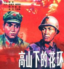 电影《高山下的花环》海报