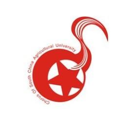华南农业大学合唱团图片