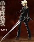命运降临之夜结局什么意思.sabre为什么把剑扔了?被国家毁灭?