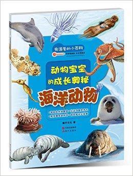 巨型蓝鲸宝宝    寒冷家园出生的竖琴海豹    自食其力的柠檬鲨图片