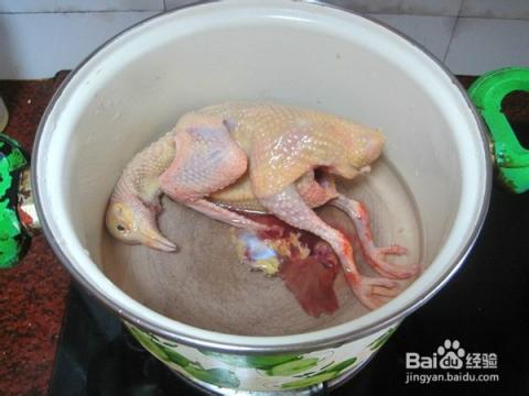 鸽子大厨文字v鸽子【清炖美食汤】桂林美食金牌图片