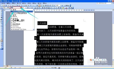 word基础入门 九,字符格式排版图片