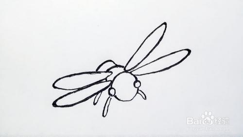 简笔画蜻蜓画法