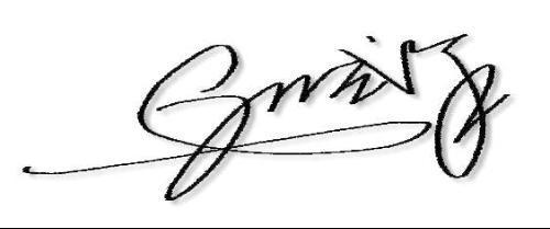 一笔艺术签名笔画教写