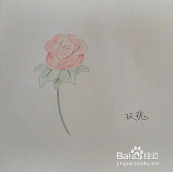 玫瑰花简笔画的画画步骤