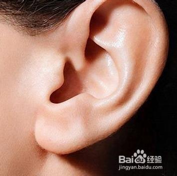 耳朵怎样护理图片
