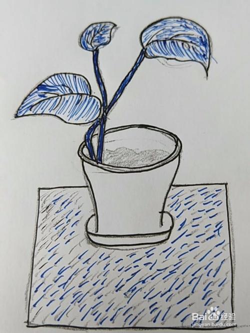 简笔画 绿萝小盆栽画法