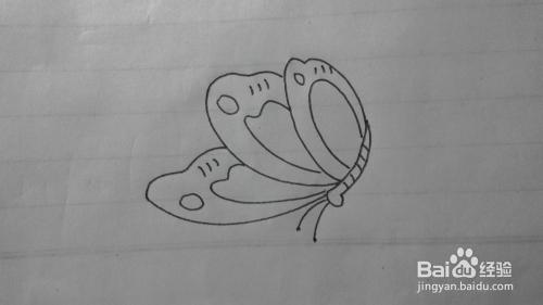 简笔画之蝴蝶的画法