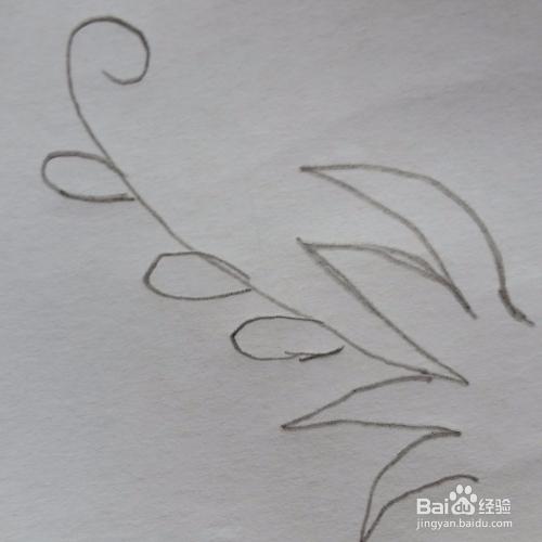 漂亮又简单的小花草简笔画