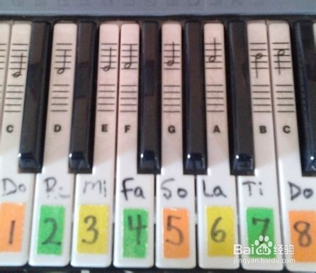 电子琴入门教程以及注意事项有哪些--业余图片