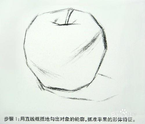素描静物单体训练——苹果的明暗画法图片