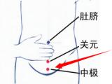 中极穴位位置图及作用