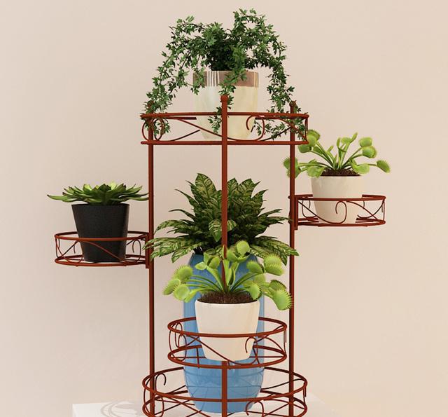 欧式花架,打造小花园图片