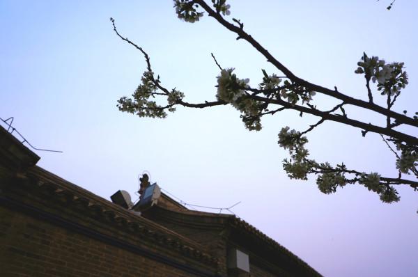 蔚县旅游攻略图片13