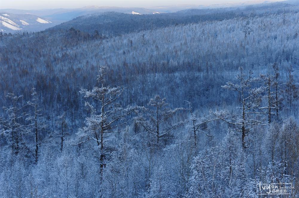 寒原style -内蒙古呼伦贝尔大草原冰雪民俗之旅_旅游图片
