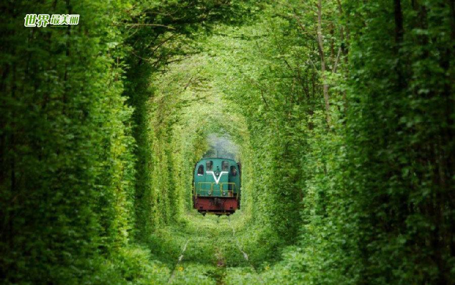 最吸引情侣的隧道 乌克兰浪漫铁路