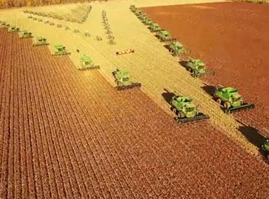 70台机车收割2万亩高粱 如航母前行