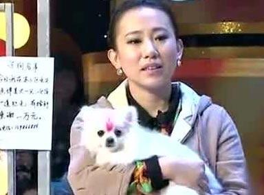 周云鹏丫蛋王金龙爆笑小品《卖狗》,太可乐了