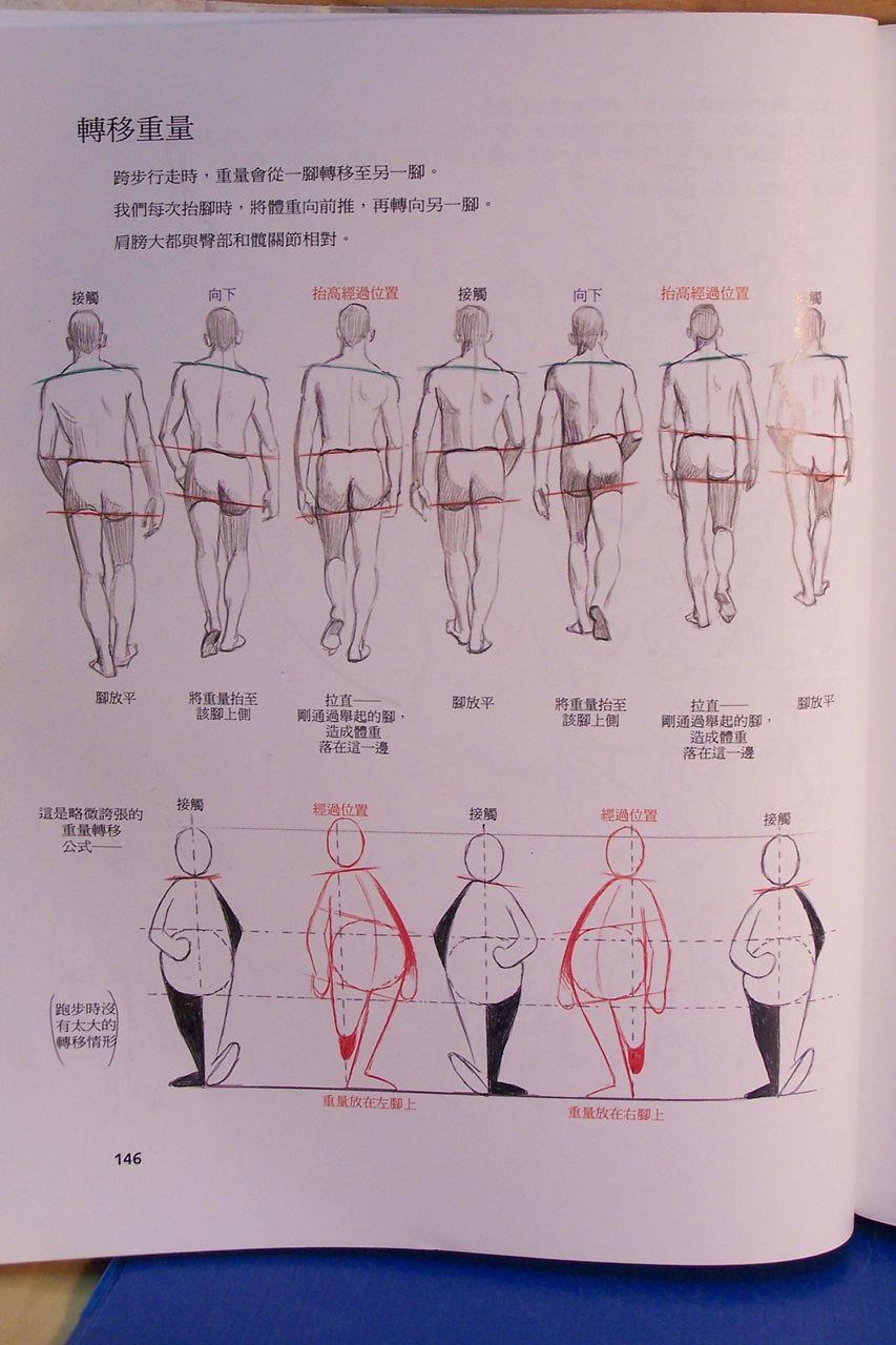 谁有人物走路解析图 高清图片