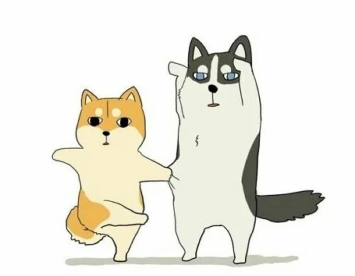 两只狗的情侣衬衫