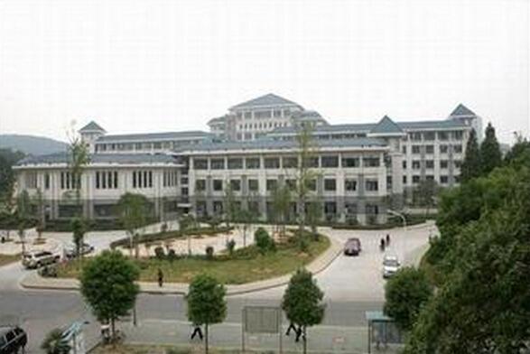 武汉大学经管院研究生的实习薪资大概有多少?实习后被图片