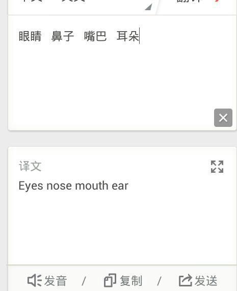 眼睛脸耳朵英语单词怎么读