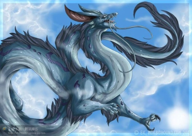 Black Dragon Wings For Cats