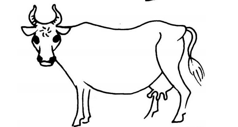 怎么画牛图片