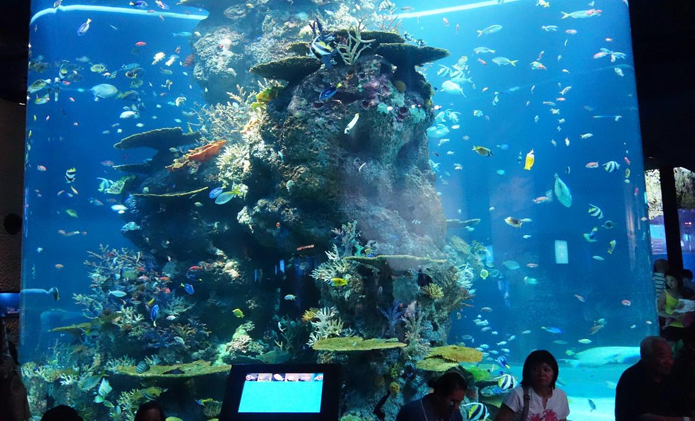 新加坡海底酒店价格