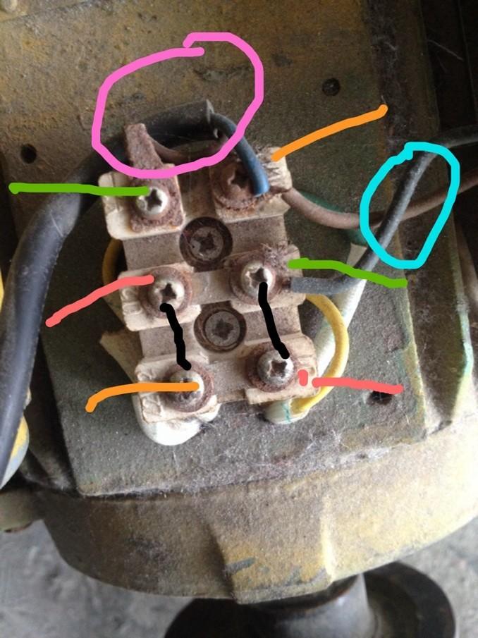 黄线,离心开关出线.有的小电机没有.粉红圈的两根,启动电容,既大电容.图片