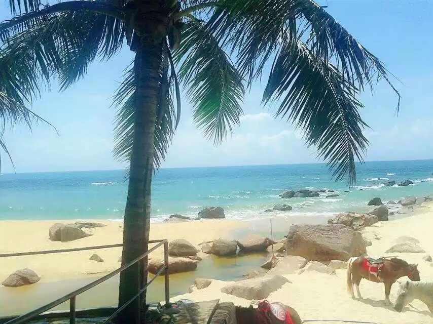 赞美海南岛美景的句子有哪些