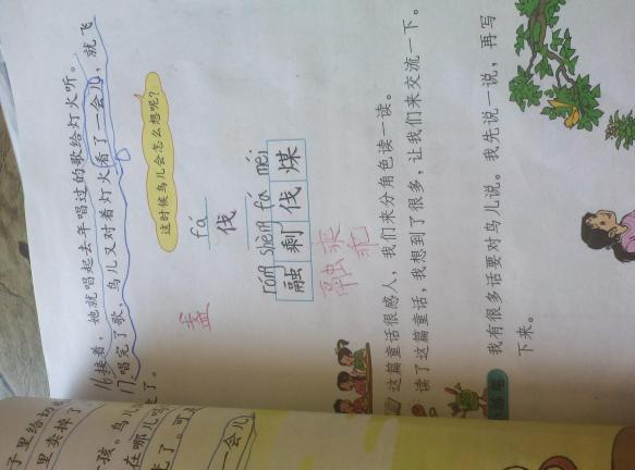 去年的树这篇课文体现了什么?表达了小鸟对朋友的什么图片