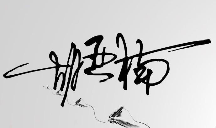 设计一个签名,笔画少一点的,或者一笔的都行,名字是 胡亚楠 ,