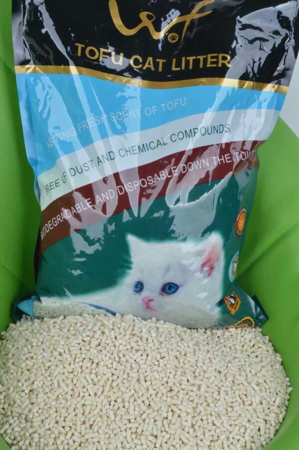 猫在猫砂盆里睡觉