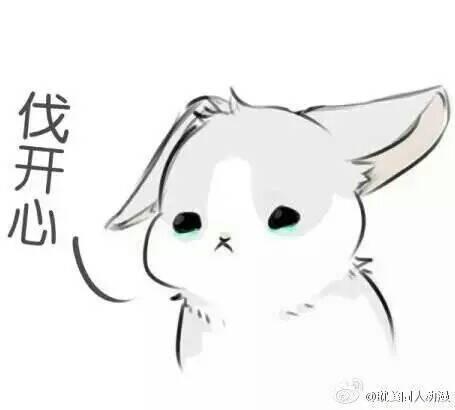 萌兔子表情包分享展示图片