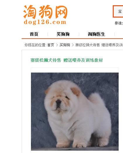 脸胖的狗是什么品种