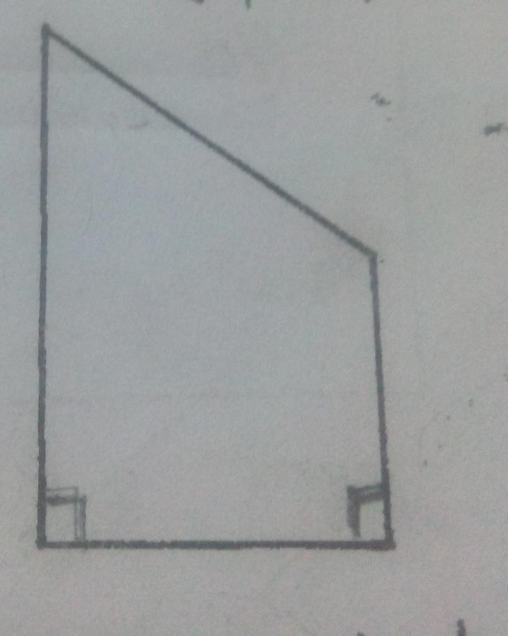 (1)画一条高,把平行四边形分成一个三角形和一个梯形.(2)画一条高图片