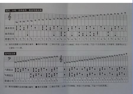 圆号指法表图片