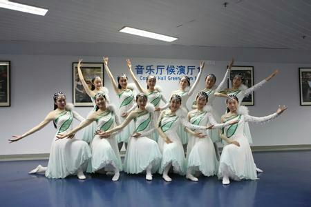 12人舞蹈队形变换 3种以上 求图片 重赏图片