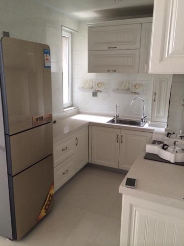 厨房是白色的整体橱柜,放一个香槟色冰箱好看吗?协调吗?急图片
