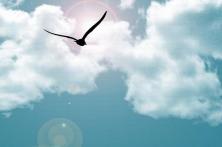《让梦想走向阳光》是一部刘泽群导演的关于教育题材的电视剧.图片